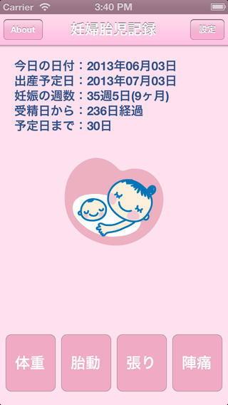 妊婦胎児記録